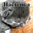 Настёна Шпагина, 25 марта 1996, Санкт-Петербург, id6636967